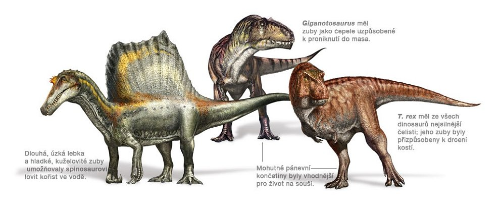 SPECIÁL: Dinosauři