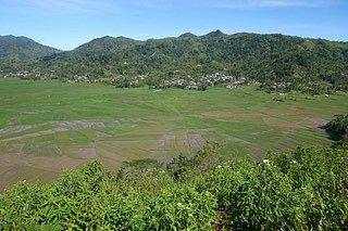 Bali nejsou jen pláže, ale irýžové terasy.