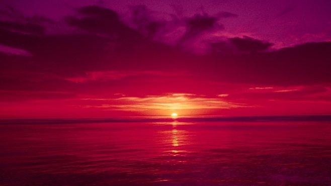 Smrtící rudý příliv: kdo může za krvavé moře?