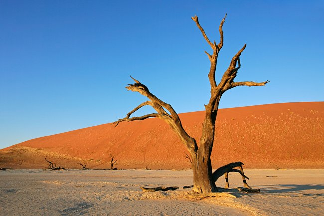 Namibie je proslavená svou pouští Namib a Kalahari.
