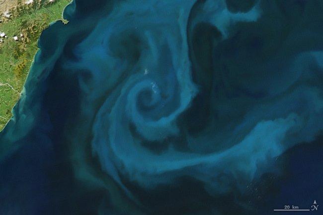 Písmeno E – Kvetoucí fytoplankton kousek od pobřeží Nového Zélandu
