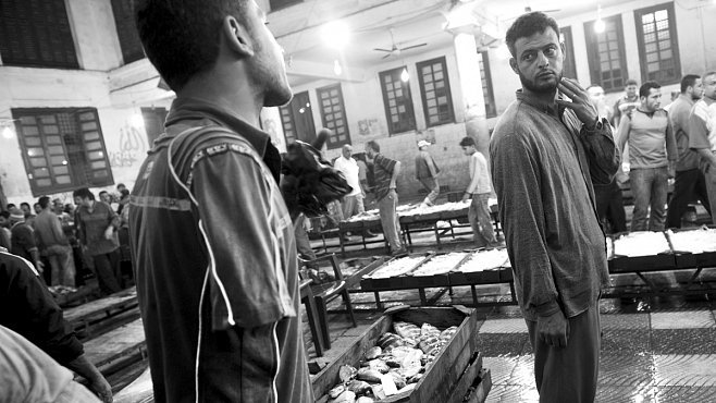Na rybím trhu v Alexandrii aneb noční rybolov a nekonečné smlouvání