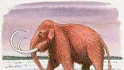 Na Sibiři našli zbytky zachovalých těl mamutů. Rusové je už zase chtějí klonovat