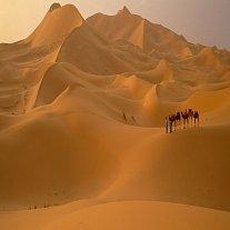 Ztracené kmeny zelené Sahary