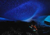 Avšak tamní biologie je pramálo zdokumentovaná. Je to částečně proto, že nahoře na Erebu se vyskytují hlavně mikroskopické formy života. Výjimkou je několik mechů a sinic, cyanobakterií, které stejně