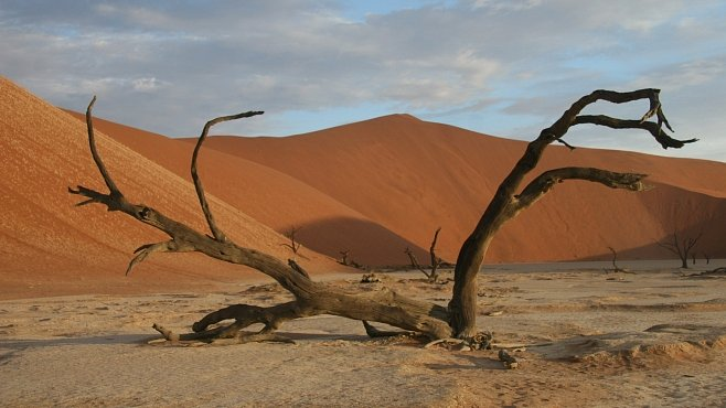 OBRAZEM: To nejlepší z expedice s National Geographic v Namibii