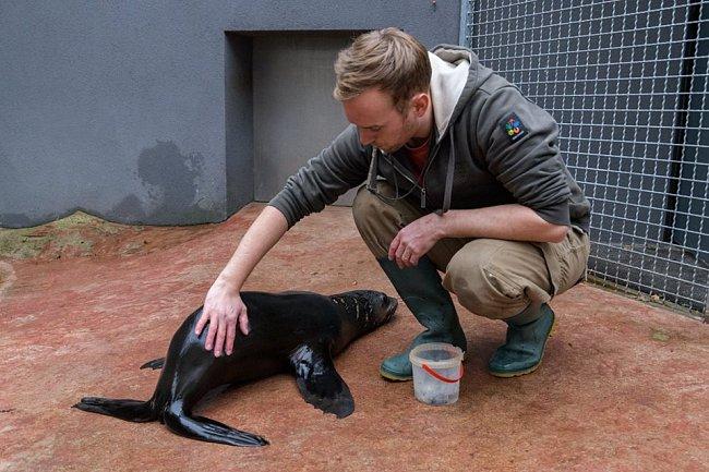 U každého správně chovaného zvířete je důležitá preventivní veterinární prohlídka.