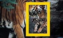 National Geographic: Co se vám vybaví jako první? Poznávejte nová místa, foťte a vyhrajte.