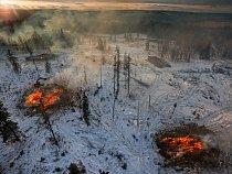 Od roku 2004 porazili lesníci vprovincii Alberta více než milion napadených stromů. Doufali, že tím tažení lýkohuba na východ zpomalí. Většina poražených stromů se spaluje, tak jako tyto u města Grande Prairie.