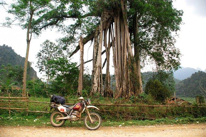 Pokud máte srdce dobrodruha, Vietnam na motorce vám učaruje.