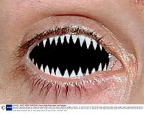 Mandatory Credit: Photo by Kevin Smith/Solent News / Rex Features ( 1085405h ) One of Kevin Smith\'s eye-catching contact lenses called \'Jaws\' Eye-catching contact lenses by Hollywood special effe