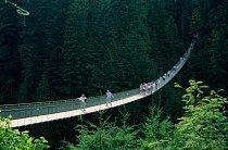 Capilano Suspension Bridge, Kanada: Visutý most v lesích, dlouhý 140 metrů, je v 70metrové výšce ukotvený pouze na svém začátku a konci, takže se neustále houpe.
