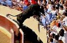 Hrůzostrašný okamžik: Býk skáče mezi diváky