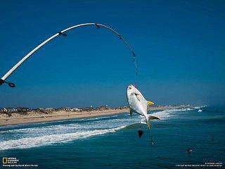 Rybaření v Austrálii