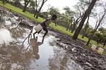 Dívky jdou pro vodu k distribučnímu místu v táboře Batil.   Silné deště a záplavy v táboře zhoršily už tak špatný stav vodních zdrojů a sanitace.