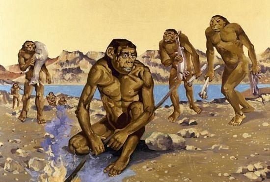 Aby se jim lépe kradlo - to je důvod, proč se naši předkové naučili chodit po dvou