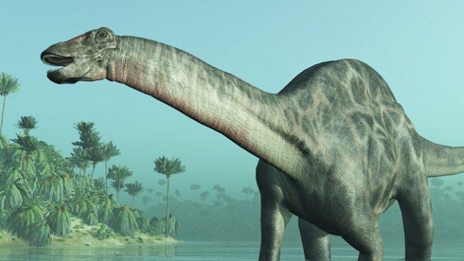 Byl objeven zřejmě nejstarší známý dinosaurus. Fosilie dokazuje, že je starší o 10 až 15 milionů let