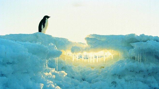 Čeští vědci odjeli do Antarktidy. Budou zkoumat klima a život na nejdrsnějším místě planety