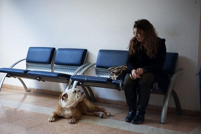 Když jeho pes Milky před lety onemocněl rakovinou, rozhodl se mu nejdříve pomocí chemoterapie prodloužit život. Po jedné těžké noci bylo ale jasné, že nastal čas se rozloučit.