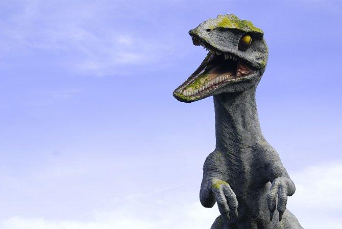 Velociraptoři patří také k předkům dnešních ptáků.