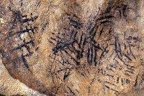 Býčí skála se zdobí nejstarší jeskynní kresbou u nás.