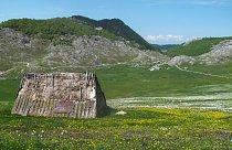 Rozkvetlá Moračke planine, Černá Hora