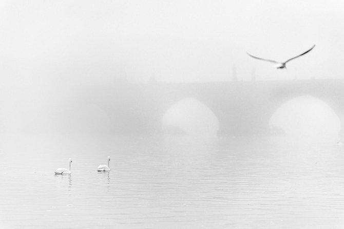 Mlhavý prosinec uKarlova mostu