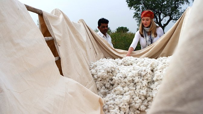 Organická bavlna přináší značné ekonomické a ekologické výhody, ale celosvětově se jedná oméně než 1% zcelkové roční úrody.