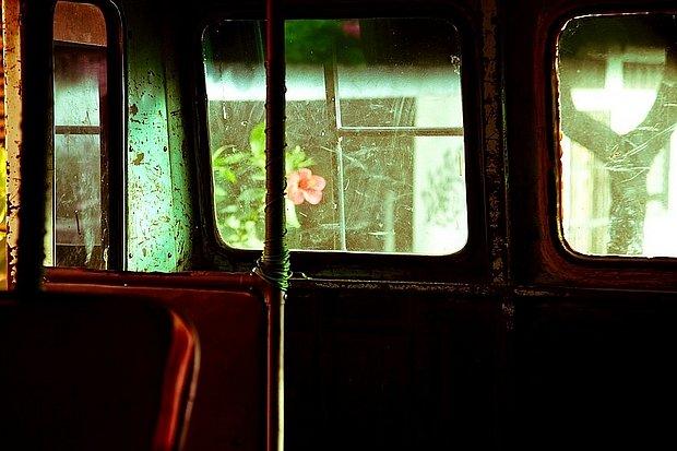 Poetický průhled autobusem vobci Altagracia