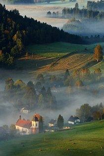 Rozmanitá mozaika české krajiny přináší rozmanitost druhů.