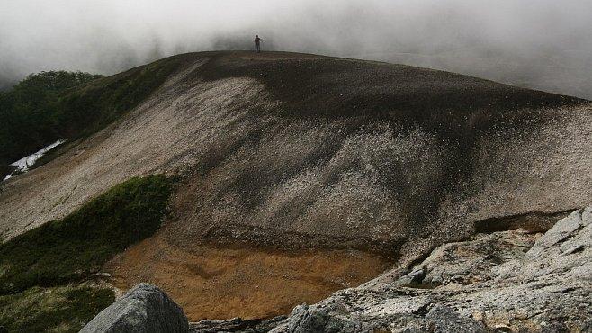 Za vulkány Chile (VII.): Cerro Frutilla aneb Bambusovým lesem na Jahodovou louku