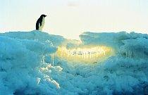 Nehostinná Antarktida je místem, kde byla naměřena nejnižší teplota (–89,2 °C na ruské základně Vostok).
