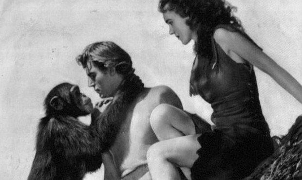 Zemřel Cheetah – osmdesátiletý šimpanz, který hrál v černobílém Tarzanovi