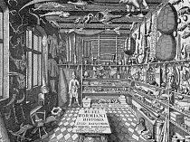 Rytina z roku 1655 zachycuje kabinet kuriozit dánského badatele Ole Worma.  ILUSTRACE Z KATALOGU MUSEUM WORMIANUM OLE WORMA (OLAUS WORMIUS)