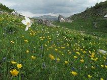 Salaše pod vesnicí Velje Duboko, Moračke planine, Černá Hora