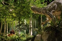 VMuzeu stvoření vPetersburgu vKentucky obývají Adam aEva Rajskou zahradu spolu sdinosaurem. Young-Earth Creationists (Kreacionisté mladé Země) věří, že planeta byla stvořena splně fungujícími dospělými  lidmi před necelými 10000 lety.