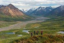 Národní park Denali na Aljašce je obrovským územím severské divočiny, která je nejen přísně chráněna, ale zároveň je také z velké části otevřena návštěvníkům.
