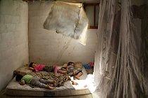Zoufalé úsilí najít nějaký příbytek – při současném nedostatku ubytování – přivedlo rodinu těchto spících dětí (dole) na zemědělskou usedlost. Nájemné za jedinou místnost, kde teď bydlí šest lidí, činí 150 dolarů měsíčně.