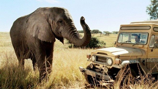 Cestujeme s National Geographic v roce 2012