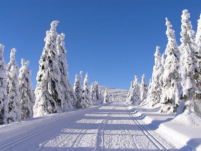 I Krkonoše, naše nejvyšší hory, lákají vyrazit na běžky.
