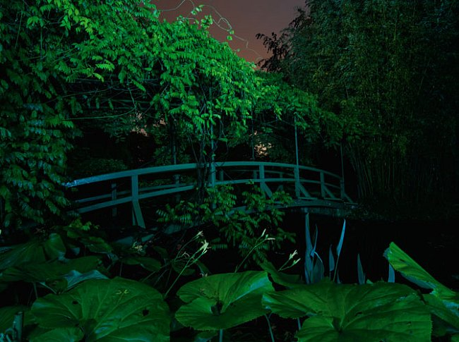 """""""Za to, že jsem se stal malířem, vděčím možná právě květinám,"""" říkal francouzský impresionista Claude Monet. Čekal čtyři roky, než jeho vodní zahrada v Giverny rozkvetla."""