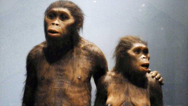 Lucy měla před miliony let souputníka. Chodil také vzpřímeně