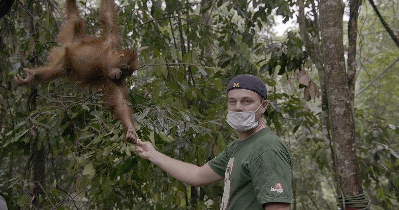 Leonardo DiCaprio ukazuje, co se děje s přírodou vlivem klimatických změn.