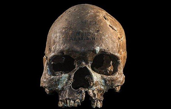 Dochovaná lebka Hòabìnhiana, původního obyvatele jihovýchodního Asie.