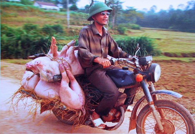 Na motorce dokáží Vietnamci přepravit cokoli.