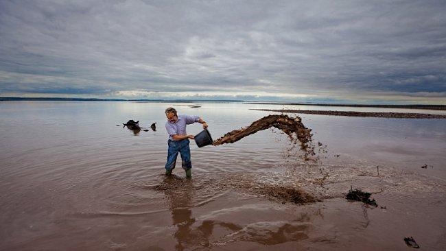 Pátrání po zaplaveném světě - Doggerlandu. EXKLUZIVNĚ PRO NG
