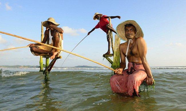Není náhoda, že na Šrí Lance uvidíte sedět rybáře na kůlech zaražených v moři.