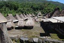 Vesnice Bajawa na ostrově Flores je proslulá díky typickým příbytkům s rákosovými střechami.