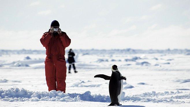 Antarktická sezóna 2012-2013 na české polární stanici začíná. Čím bude výjimečná?
