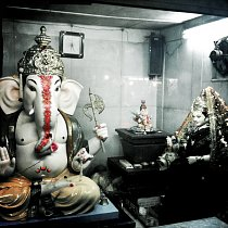 Sloní vesnice Hathi Gaon